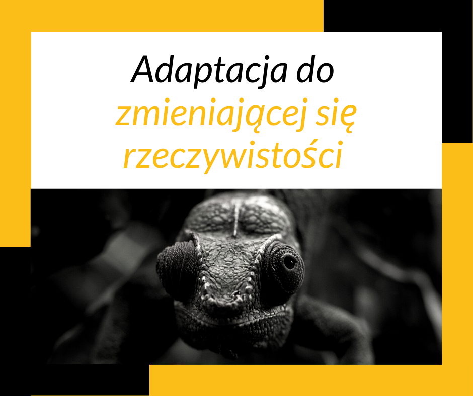 adaptacja do zmian kameleon